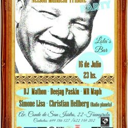 Nelson Mandela Tribute Party